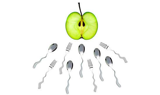 nutriție adecvată pentru o erecție